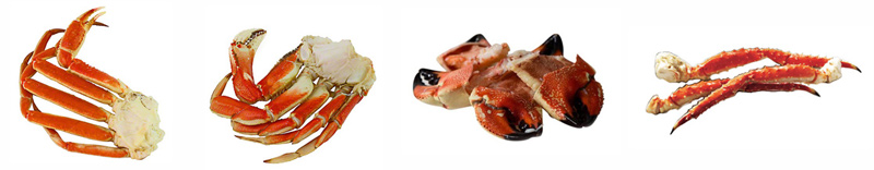 photo of four crabs