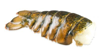lobster tail photo